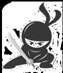 Salon Ninja   Ninja Marketing